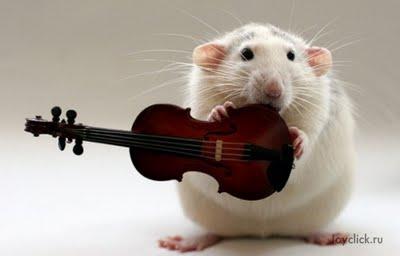 мишка где песня: