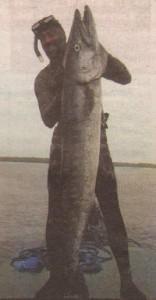 """От водите на Бали Едрев извади с харпун гигантска баракуда. Уловът му е неофициален световен рекорд за подводен риболов. Досега най-едрият екземпляр бил уловен в Япония - 29,4 кг. Рибата на Андрей заковала кантара на 31 и над 181 см, колкото е висок той. """"За жалост рекордът нямаше как да бъде регистриран, защото комисия на Асоциацията за подводен риболов нямаше как да пристигне на място. Но за мен е важно, че съм преживял това"""", обяснява пътешественикът."""