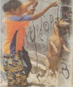 Хлапета се забавляват, тероризирайки куче