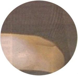 Анелия силикон