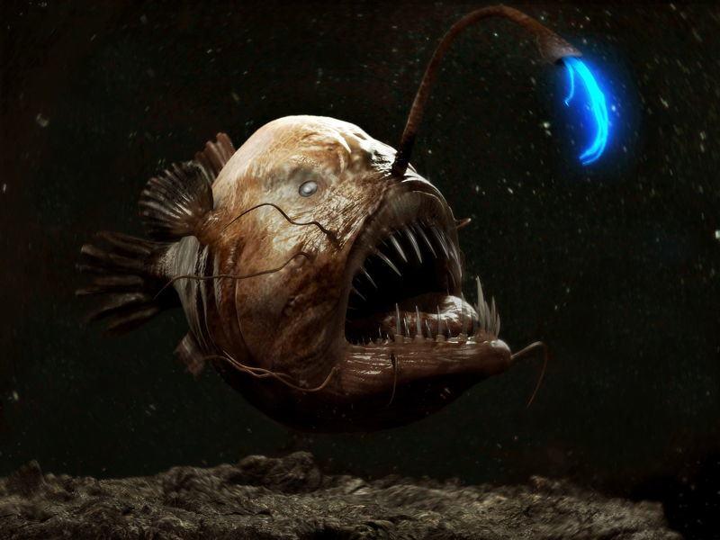 морски дявол