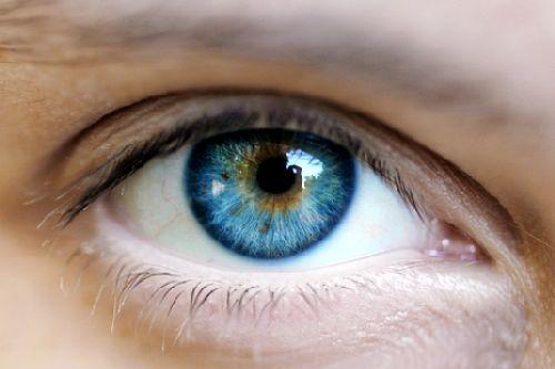 oko-zrenie-framar