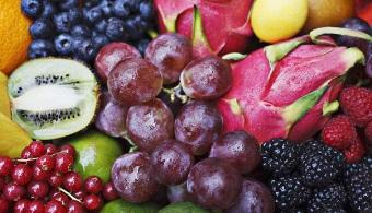 plod-zahar