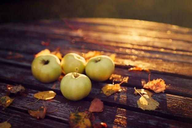 Топ храни за есенната ви диета