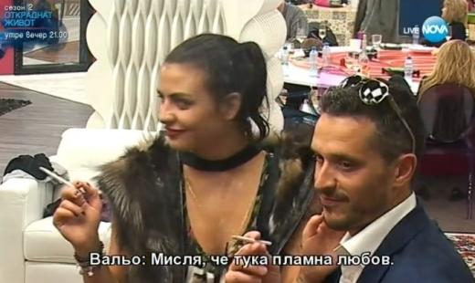 hristo-jivkov-desi